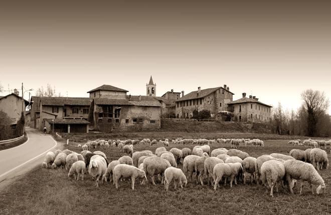 Mostra pastori