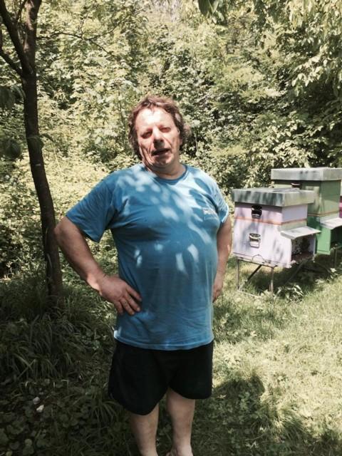 Apicoltore Orso in Trentino, SI o NO? Partecipa al Sondaggio